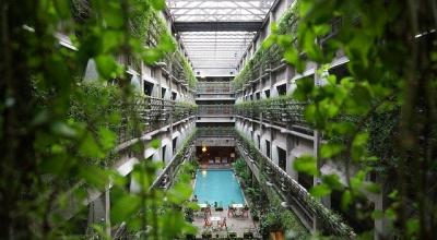 Adopter le design biophilique dans son hôtel